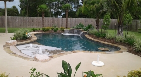 Freeform-natural-pool-with-beach-entry-tanning-ledgeraised-wall-cocktail-table and-sheer-descents
