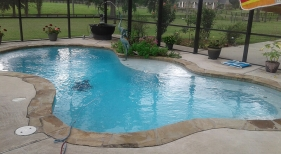 Natural-freeform-pool-flagstone-coping