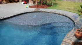freeform-gunite-pool-with-tanning-ledge-bubbler-diamond-brite-plaster-slate-bullnosed-coping